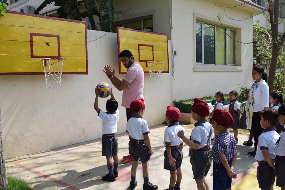 BasketBKG01AP